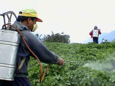 harmful-effects-of-and-pesticides